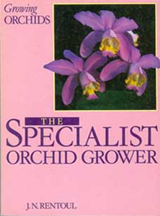 Growing Orchids – The Specialist Orchid Grower