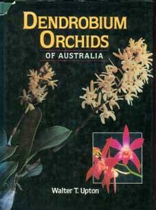 Dendrobium Orchids of Australia
